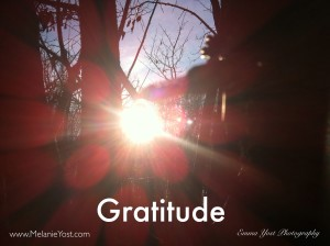 Gratitude - Melanie Yost